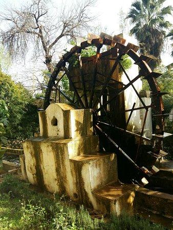 Une oasis de fraîcheur  à quelques pas de Bab Boujloud