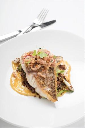 Black & Blue Steak & Crab: Fresh Florida Red Snapper