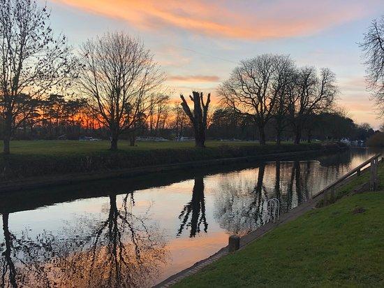 Naburn Locks: upstream
