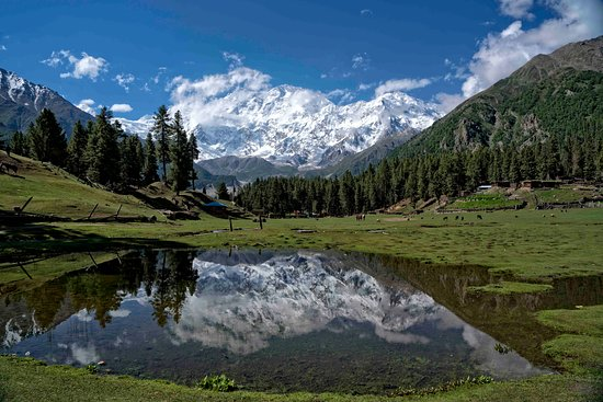 Chilas, Pakistan: A view of Fairy Meadows.
