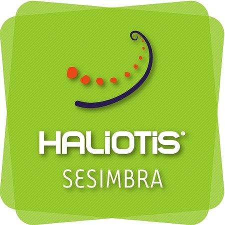 Haliotis Sesimbra