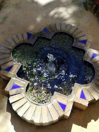 Jardin botanico la almunya del sur el ejido espa a for Jardin botanico el ejido