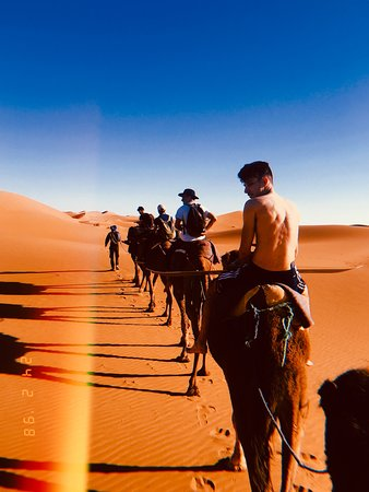 Image of: Camels Tripadvisor Gives Certificate Of Excellence To Accommodations Attractions And Restaurants That Consistently Earn Great Reviews From Travelers Tripadvisor Zagora Desert Travel 2019 All You Need To Know Before You Go with