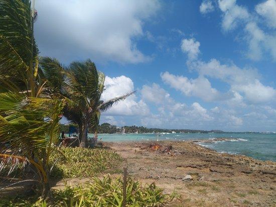 Vista da ilha de Rocky Cay