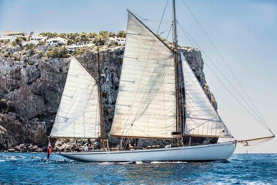 Port d'Andratx – fénykép