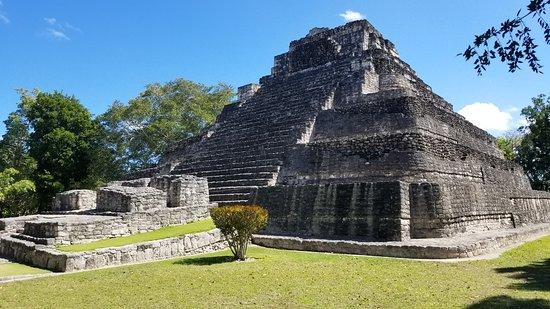 Tucan Costa Maya
