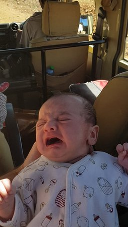 Wildebeest Safaris: Cant upload the video but it shows the severe bumpiness and my baby screaming...