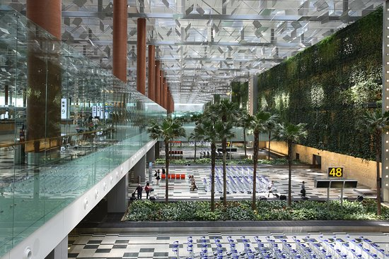 Terminal 3 is Changi Airport's eco-friendly 'green terminal' which will lift your spirits with natural skylight and gardens featuring over 200 species of foliage. Enjoy the experience traveling through this terminal.