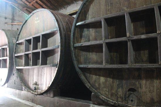 Bodegas Cavas de Don Arturo