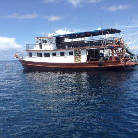 Sea View Charter