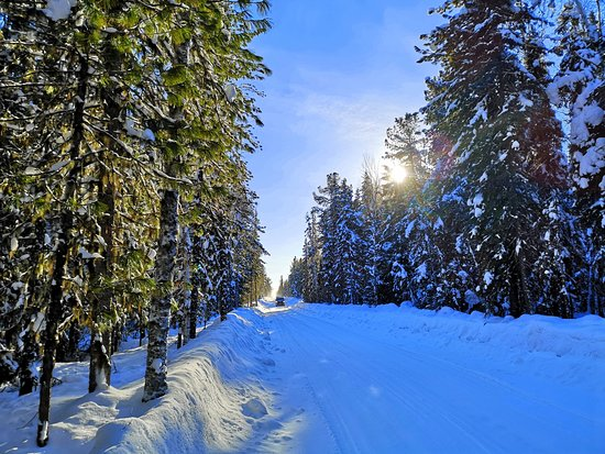 Khanty-Mansi Autonomous Okrug-Yugra, รัสเซีย: Winter road to Salekhard. How we got from Nyagan through Igrim and Sartinyu to Saranpoul and Ust-Puyva. Detailed story: https://kukmor.livejournal.com/2549756.html Зимник на Салехард. Как мы добрались от Нягани через Игрим и Сартынью до Саранпауля и Усть-Пуйвы. #ЭКСПЕДИЦИЯ #СЛЕДОПЫТ #УДИВИТЕЛЬНАЯЮГРА #EXPEDITION #SURFACE #WONDERFULUGRA