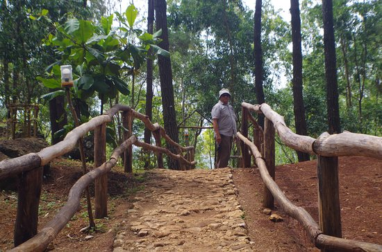 Pinus Pengger Nature Tourism: wood railings to help visitors walk through the uneven stone paved pathway