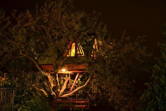 Caposele, إيطاليا: La casetta sull'albero di notte… per un'insolita fuga romantica!