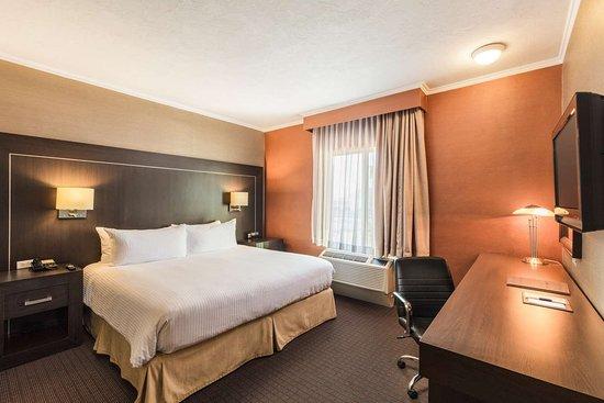 DoubleTree Suites by Hilton Hotel Saltillo