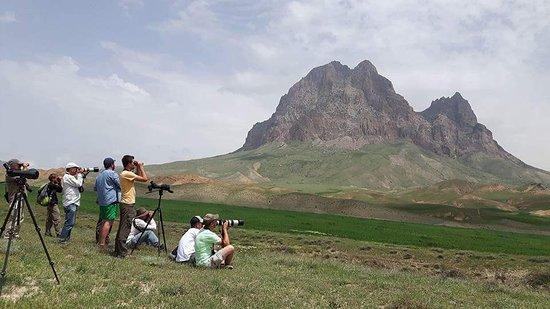 Nakhchivan, Azerbaijan: Nakhcivan. Bird-watching group  from Europe