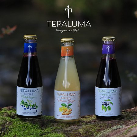 La Junta, Cile: Tepaluma´s selection of natural mixers with spring water from ice melt and native fruits and seeds. Calafate Sour and two fermented beverages: Maqui Fizz and Volcanic Ginger.
