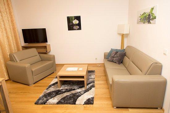 Nadland Apartment Wehlistrasse: Living room