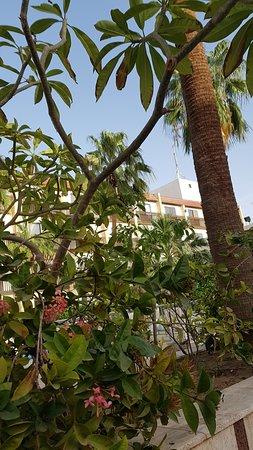 sands jeddah hotel