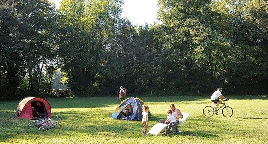 Camping La Tour Des Saveurs: terrain de camping