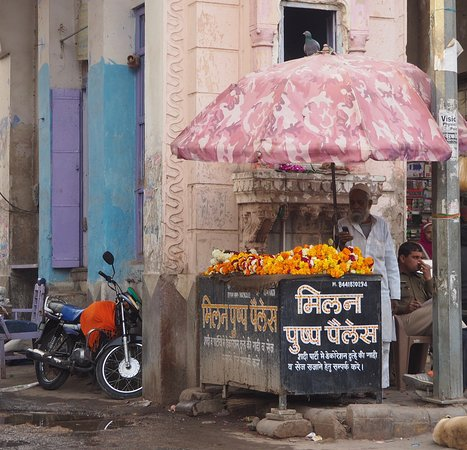 Smart India Tours: Flower seller, Nagaur