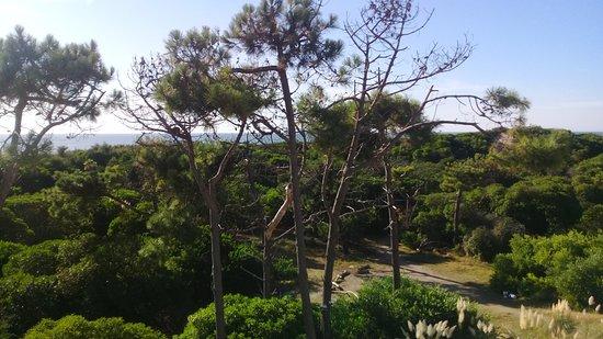 Jaina Resort & Spa: desde el balcon