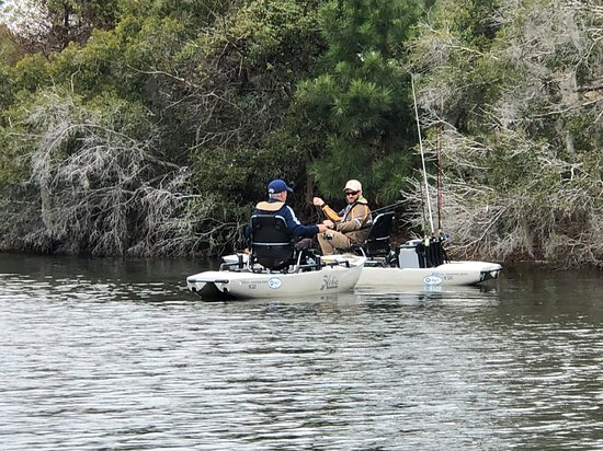 2-Hour Guided Kayak Nature Tour of Hilton Head: Chillin' at The Bluff