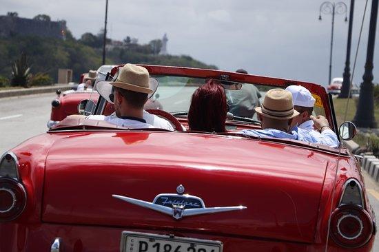 Viajes Vintage, una novel agencia que ofrece al turista que acude a nuestra isla, la oportunidad de disfrutar de una inolvidable permanencia procurándole una combinación entre diversión, educación y bienestar. Conocer a Cuba desde dentro es la meta de nuestros guías, expertos en cada trozo de la isla. Cada excursión, significa una experiencia de interacción entre personas, con un servicio especial e íntimo, y precios verdaderamente competitivos. www.viajesvintage.com