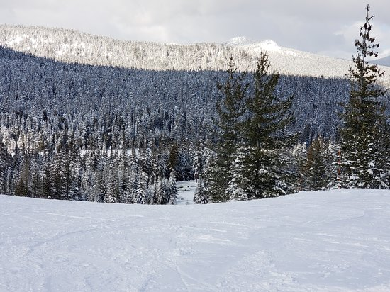 Foto de White Pass