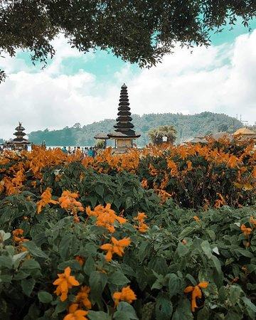 Gauriya Bali Tours