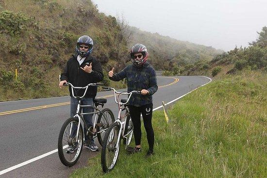 The 10 Best Haleakala National Park Bike Tours With