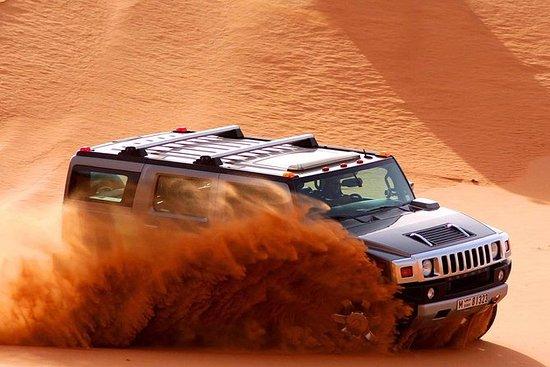 沙漠野生动物