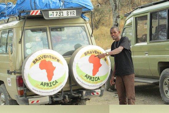 4 dias Cratera Serengeti-Ngorongoro...