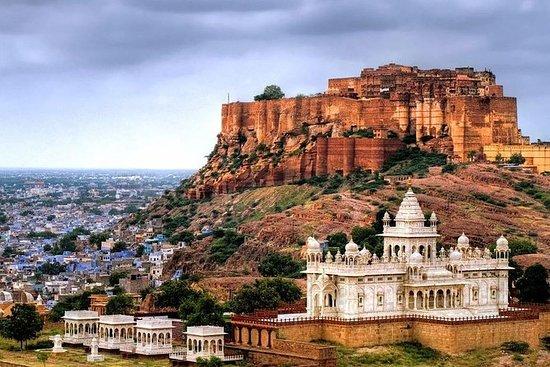 Enveis Udaipur til Jodhpur