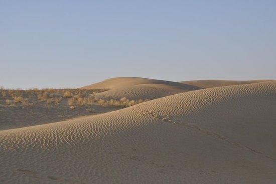 02 Dager 01 Natt Camel Safari