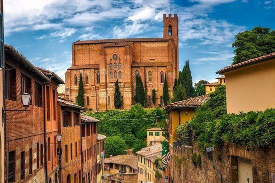 佛羅倫薩托斯卡納私人全日:Siena,San...