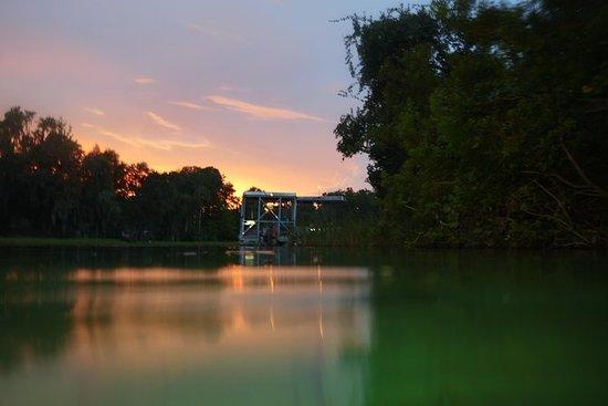 Crystal River Florida Manatee Swim...