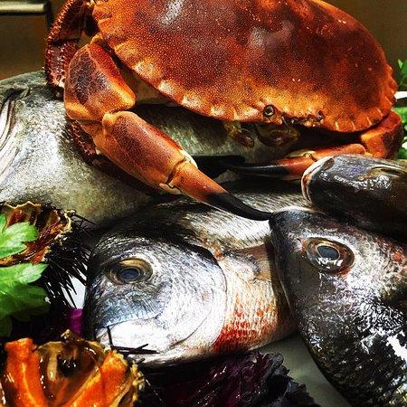 Gusti Proibiti: Pesce fresco