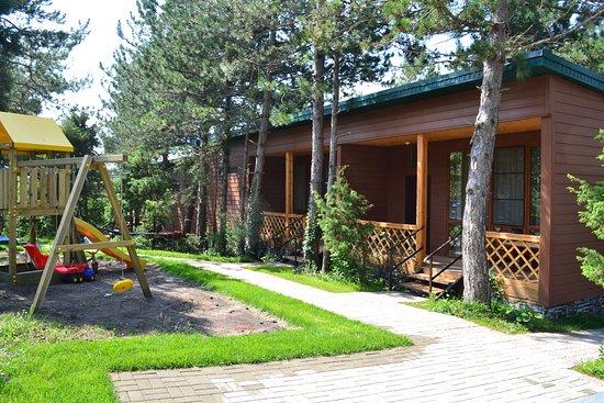 Altai: Лужайки.