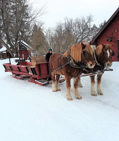 """Brantwood, WI: """"Over the river and through the woods..."""" at Palmquist's Farm"""