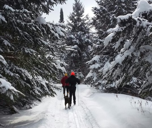 Brantwood, WI: Skiing the trails at Palmquist's Farm