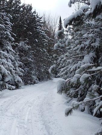 Brantwood, WI: Winter Wonderland