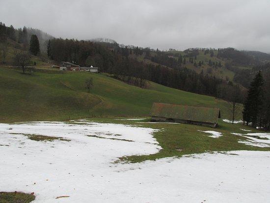 1.3.2019 Ansicht der Alphütte neben dem Schneefeld - im Hintergrund die Bergwirtschaft Zur Alp