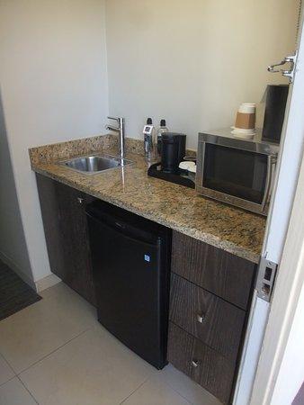 In-room Sink, Mini-refrigerator, and Microwave Oven (Just inside door)