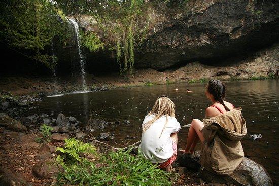 Byron Shire, ออสเตรเลีย: Killen Falls - Photo By Chris