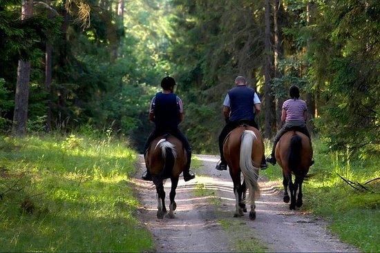 Tour di equitazione di 2 giorni a