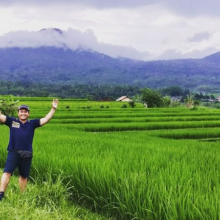Jatiluwih Green Land: Jatiluwih trekking.Iam a tour guide and a good driver in Bali.Lets enjoy to visiting Bali as your best destination.Whatsapp +6289504991857.Email :mang.budi49@yahoo.com