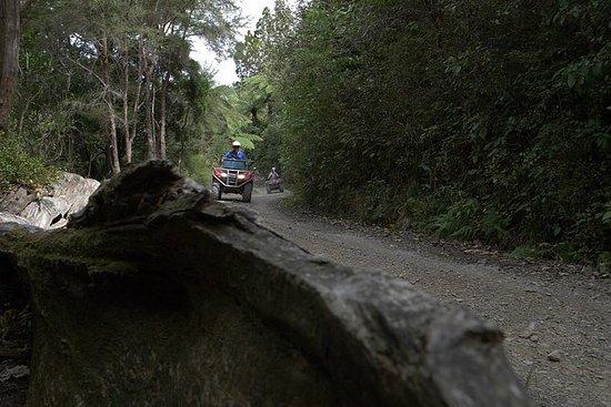 Moto quad - passeio florestal fazenda