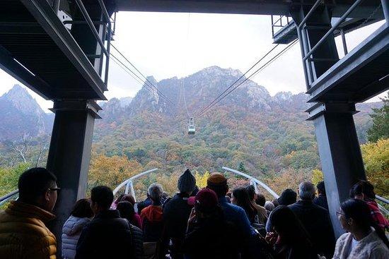 2-dagers privat tur fra Seoul: Nami...