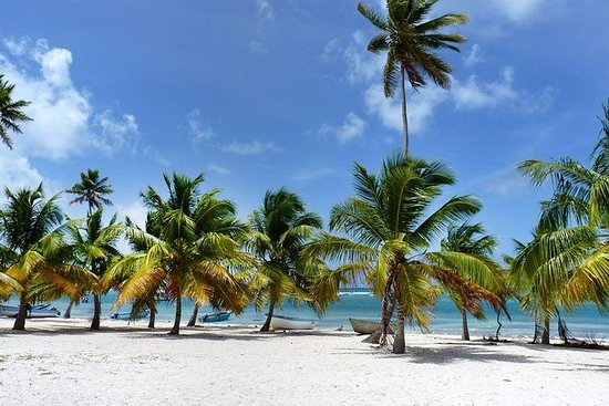 All-Inclusive Saona Island Full Day ...