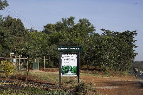 Tour por el bosque urbano en Nairobi